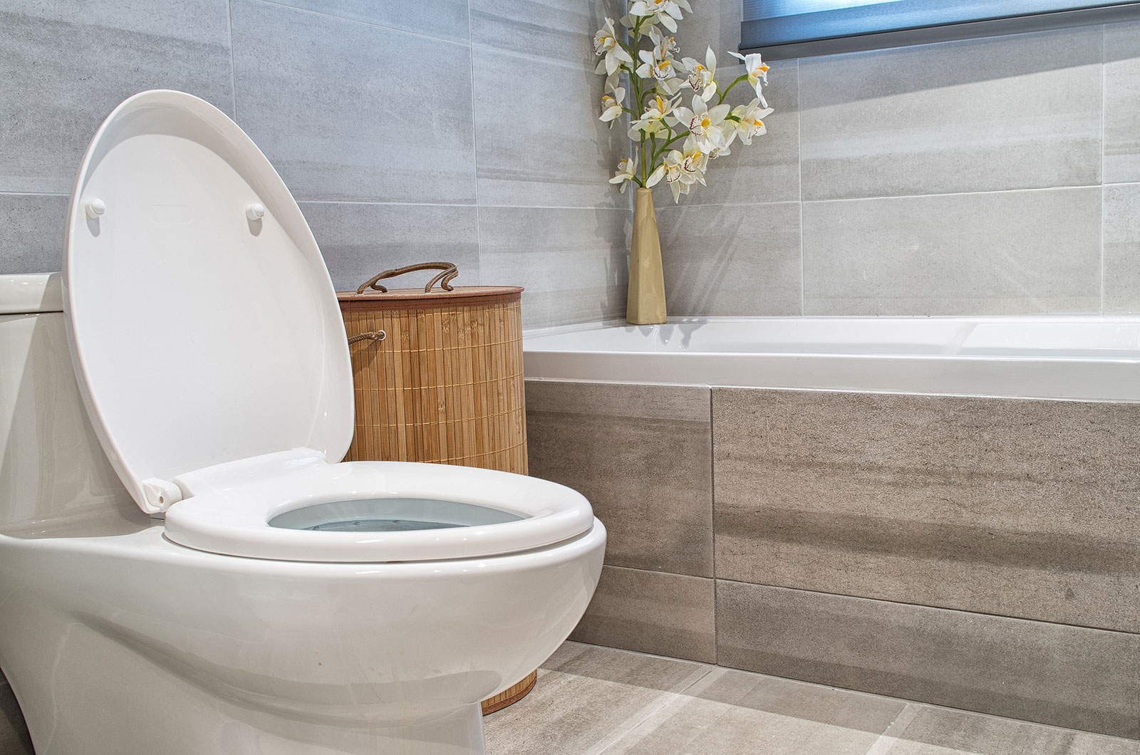 A Modern Bathroom Toilet and Bathtub